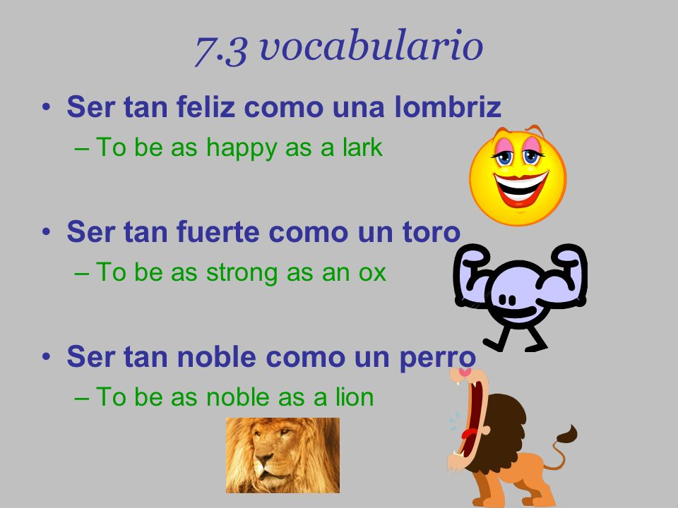 7.3 vocabulario Ser tan feliz como una lombriz