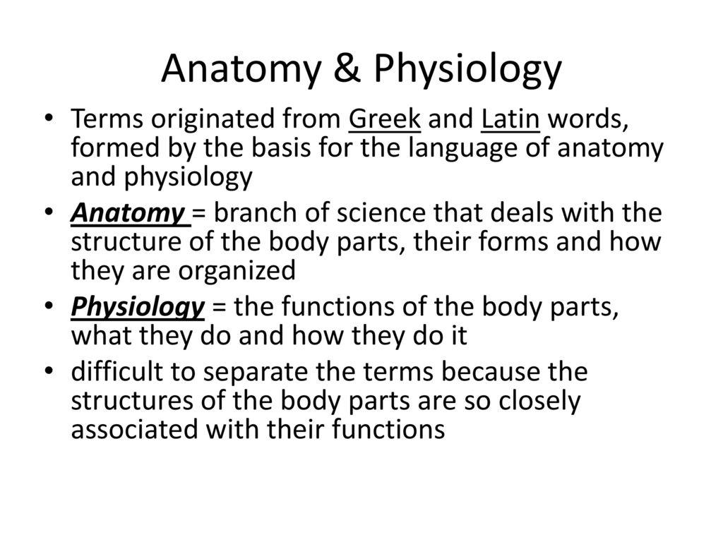 Exelent Language Of Anatomy And Physiology Adornment - Anatomy Ideas ...