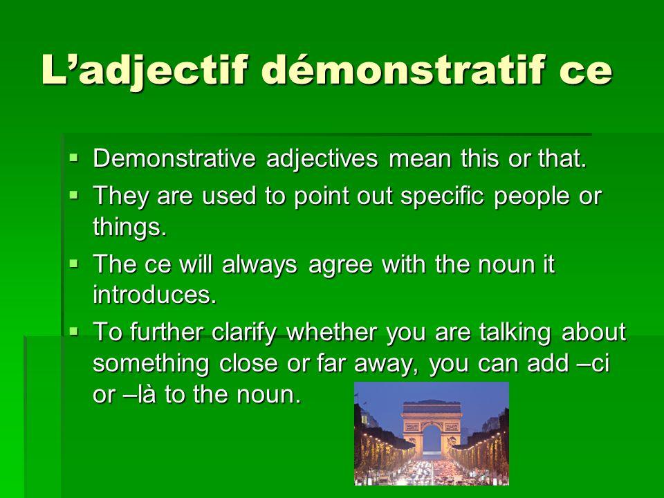 L'adjectif démonstratif ce