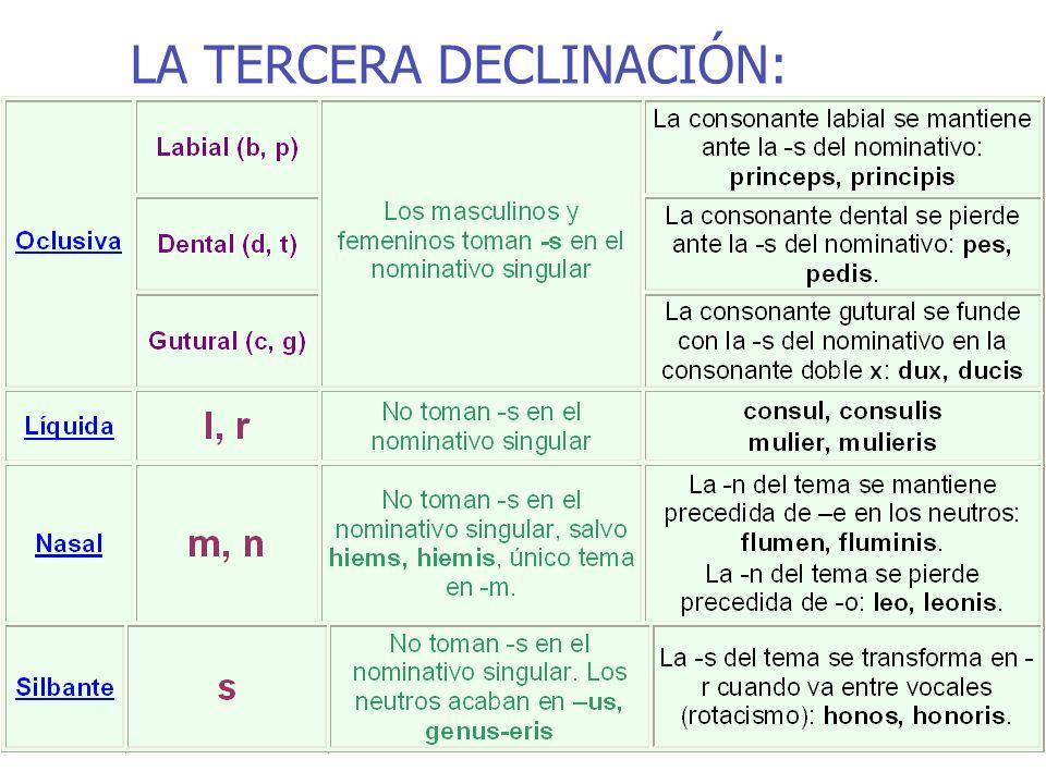 LA TERCERA DECLINACIÓN: nominativos y vocativos singulares