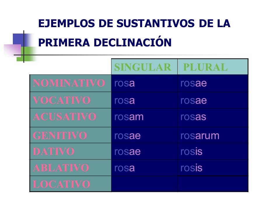 EJEMPLOS DE SUSTANTIVOS DE LA PRIMERA DECLINACIÓN
