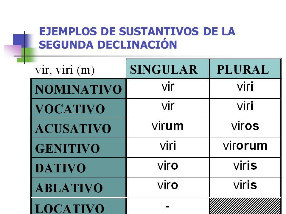 EJEMPLOS DE SUSTANTIVOS DE LA SEGUNDA DECLINACIÓN