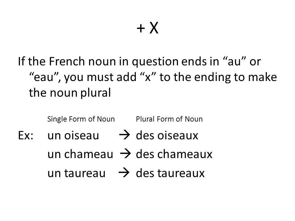 + X If the French noun in question ends in au or eau , you must add x to the ending to make the noun plural.