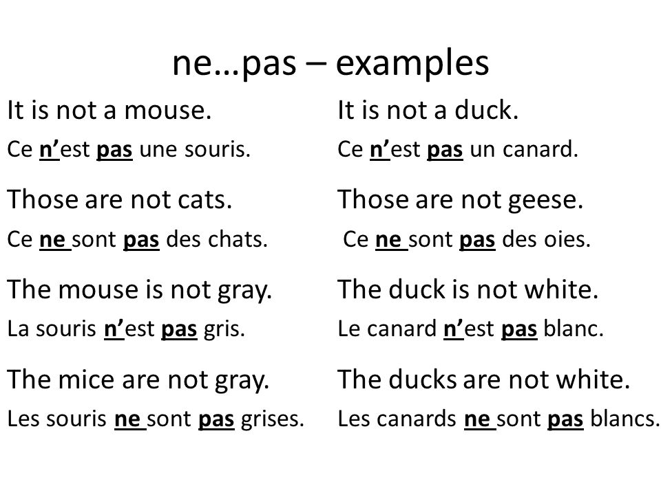 ne…pas – examples It is not a mouse. It is not a duck.