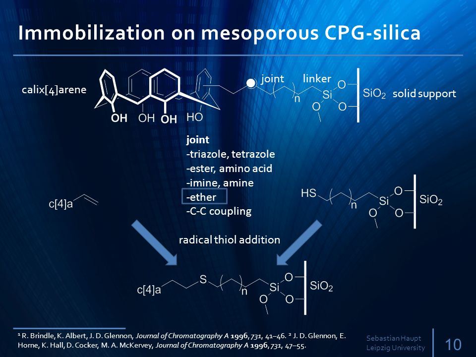 Immobilization on mesoporous CPG-silica