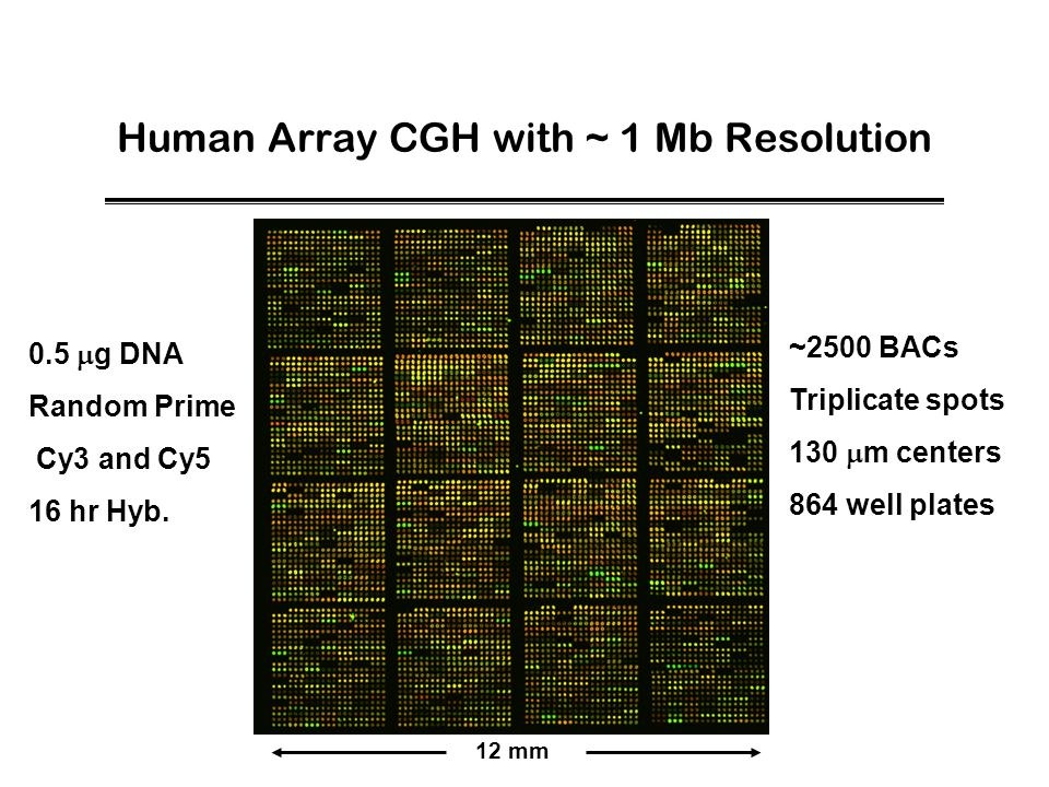 Human Array CGH with ~ 1 Mb Resolution