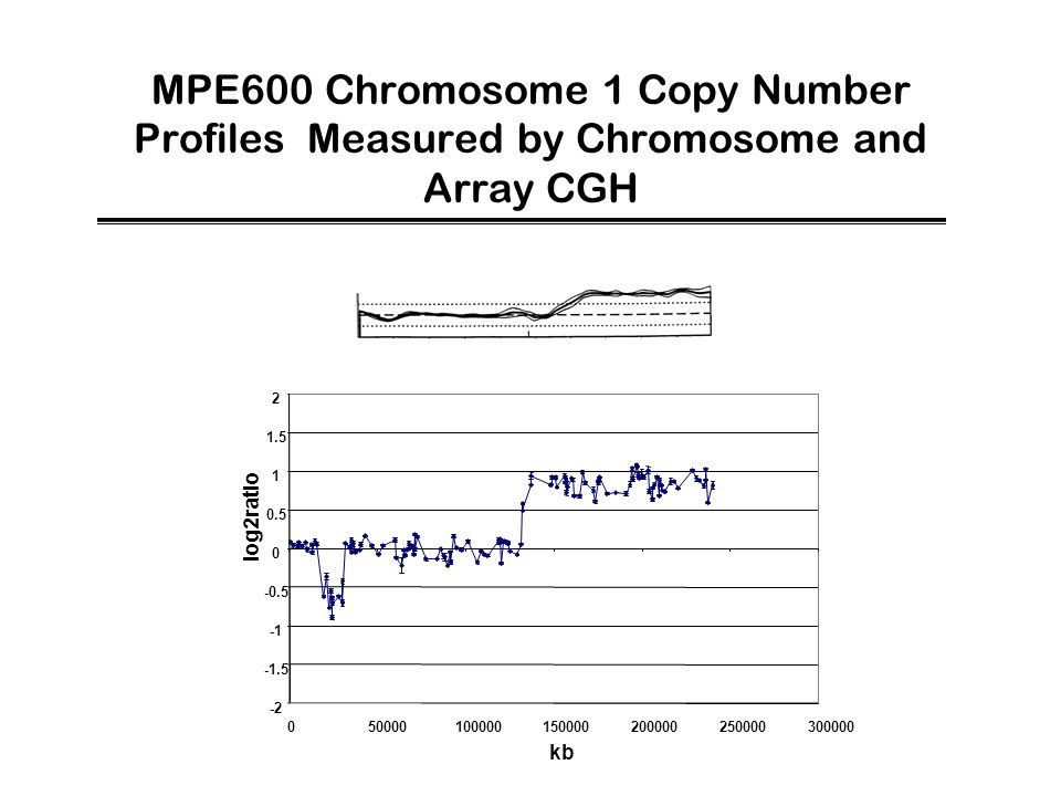 MPE600 Chromosome 1 Copy Number Profiles Measured by Chromosome and Array CGH