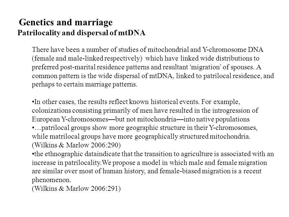 Patrilocality and dispersal of mtDNA