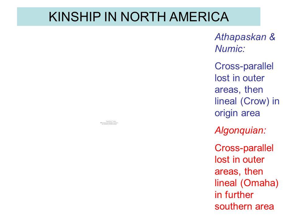 KINSHIP IN NORTH AMERICA