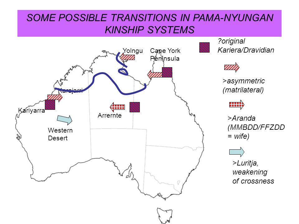 SOME POSSIBLE TRANSITIONS IN PAMA-NYUNGAN KINSHIP SYSTEMS