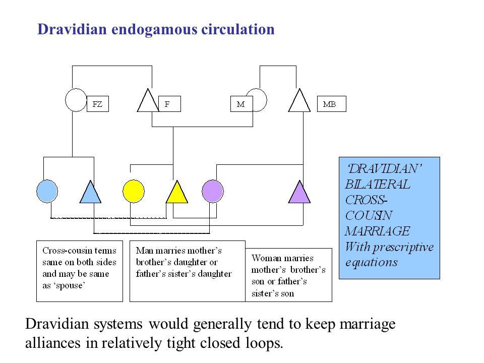 Dravidian endogamous circulation