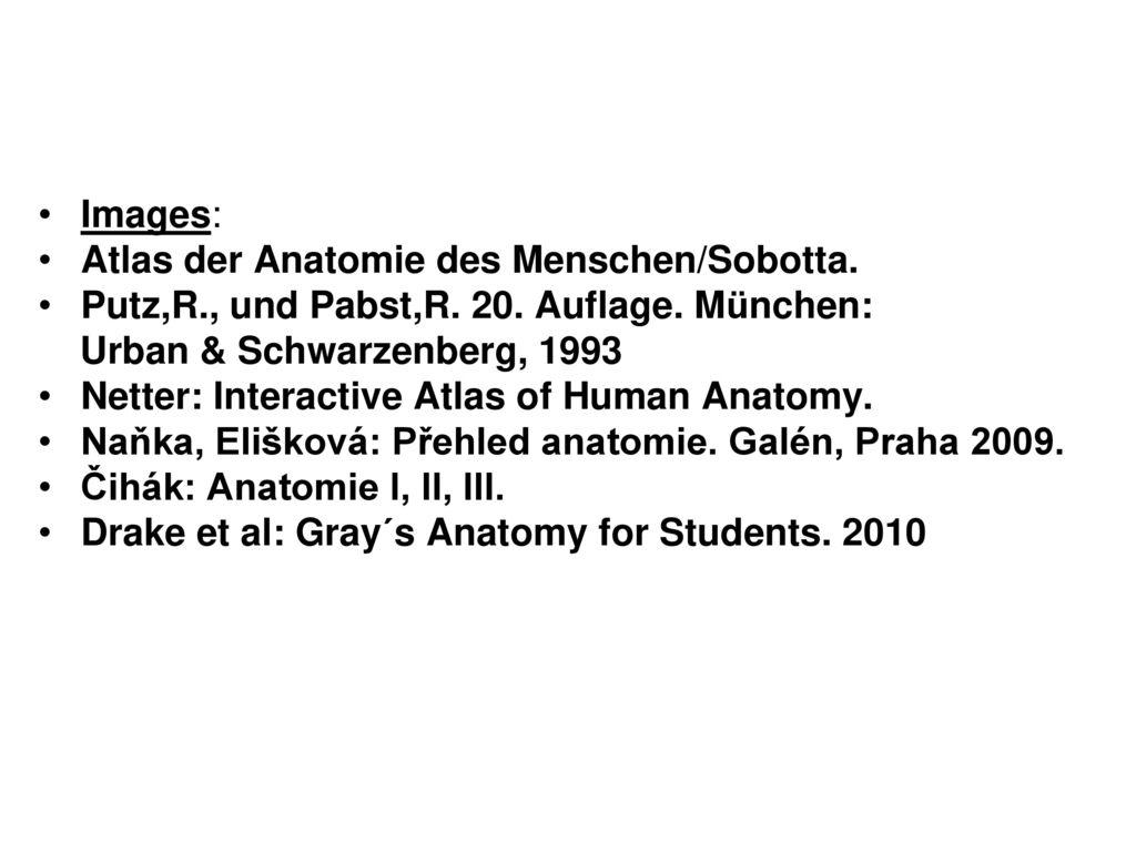 Fein Atlas Der Menschlichen Anatomie Ideen - Anatomie Ideen ...