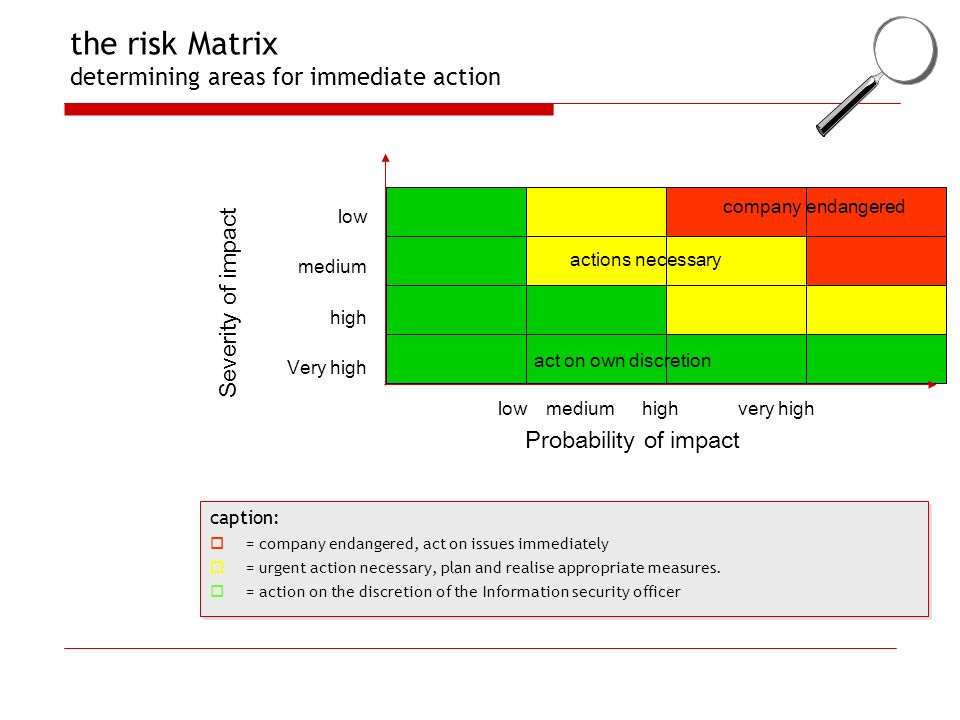 the risk Matrix determining areas for immediate action