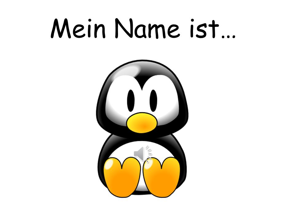 Mein Name ist… Pupils can choose a name for the penguin.