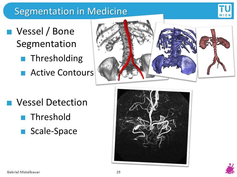Segmentation in Medicine