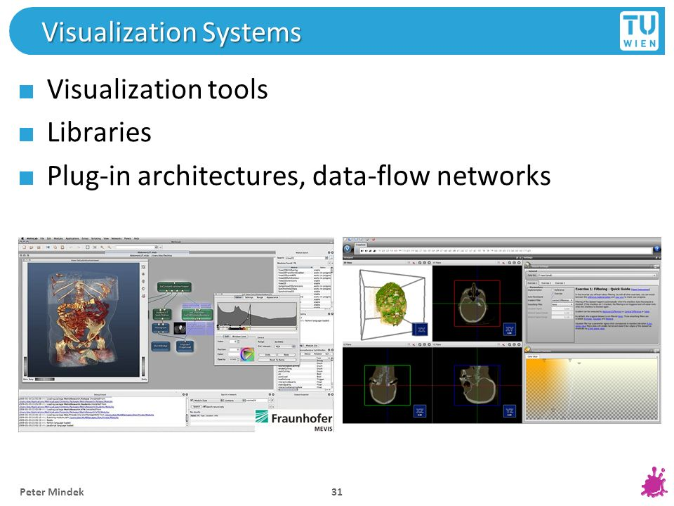 Visualization Systems