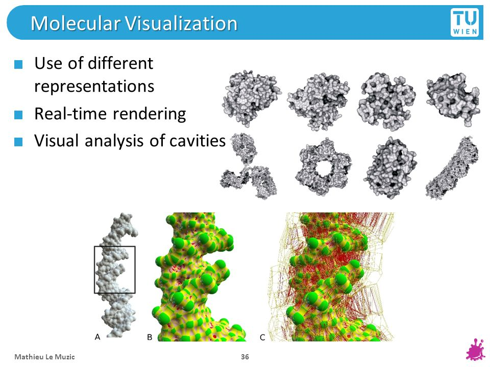 Molecular Visualization