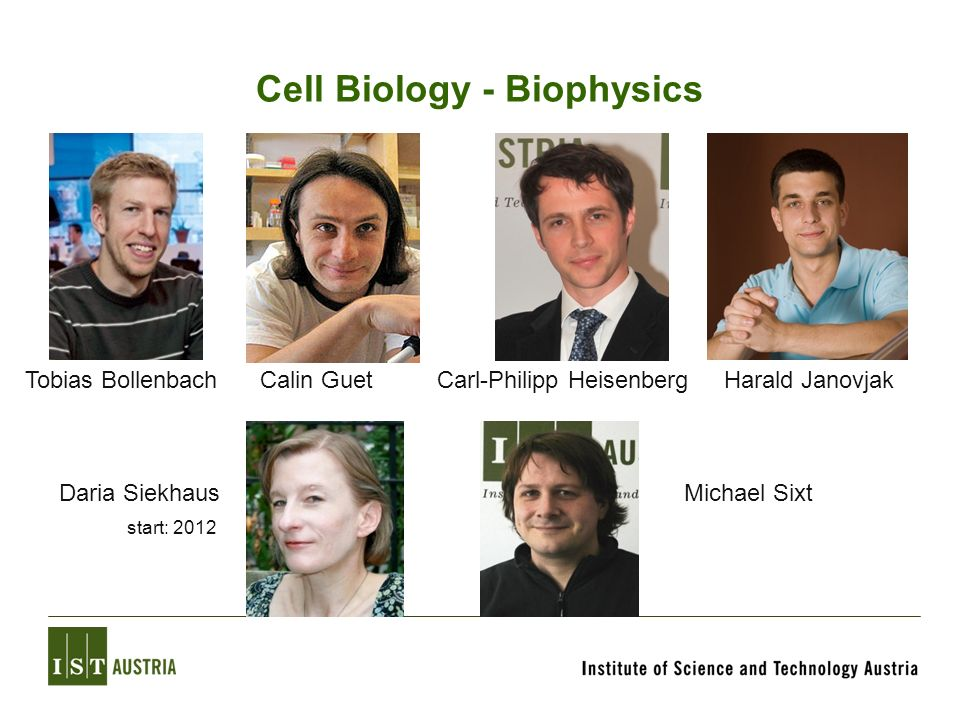 Cell Biology - Biophysics