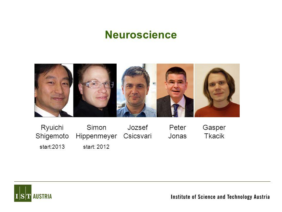 Neuroscience Ryuichi Shigemoto Simon Hippenmeyer Jozsef Csicsvari