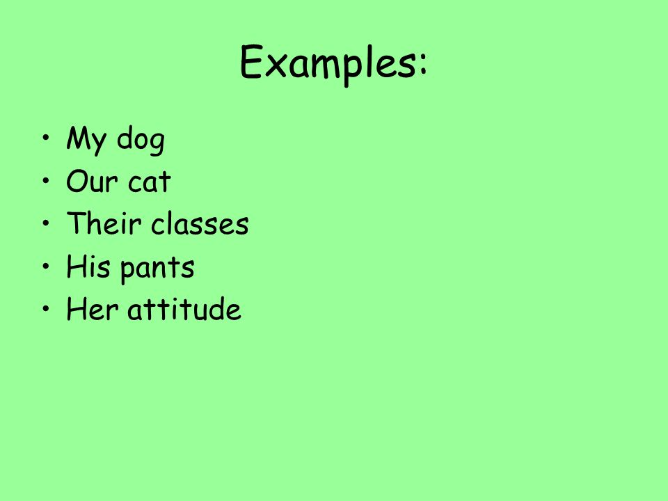 Examples: My dog Our cat Their classes His pants Her attitude