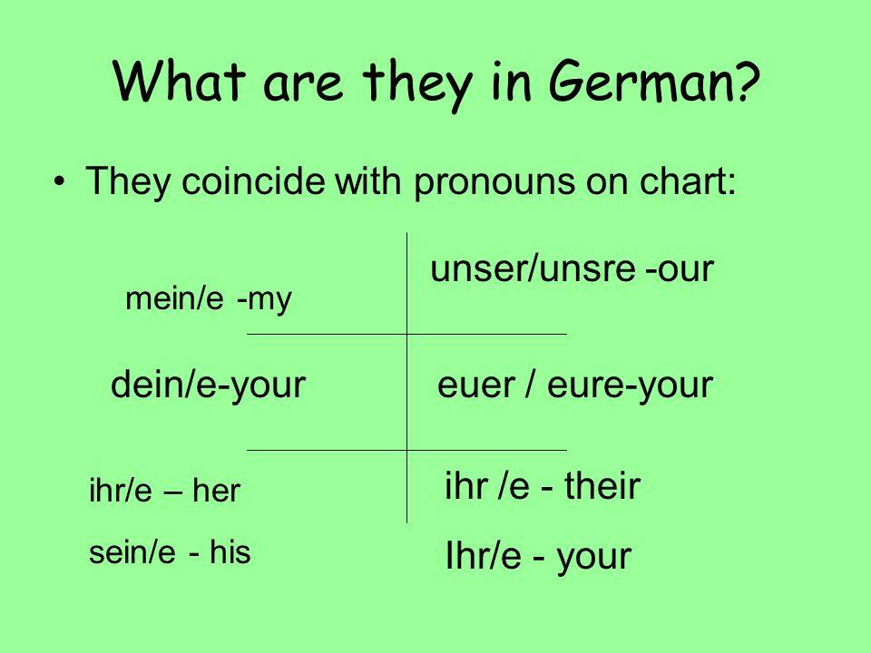What are they in German They coincide with pronouns on chart: