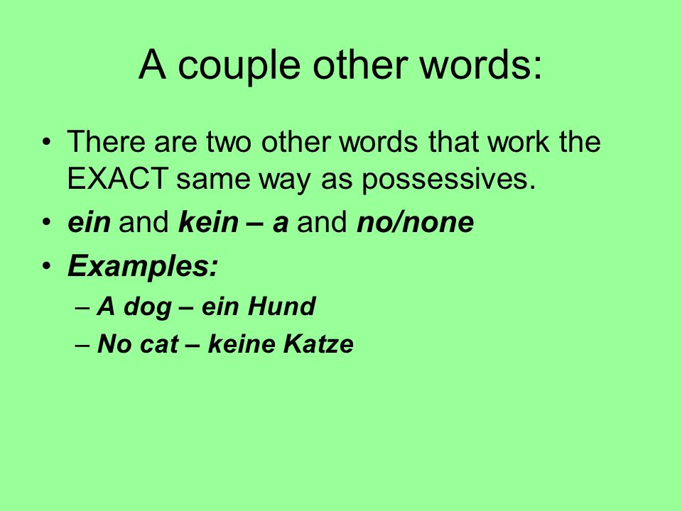 A couple other words: There are two other words that work the EXACT same way as possessives. ein and kein – a and no/none.