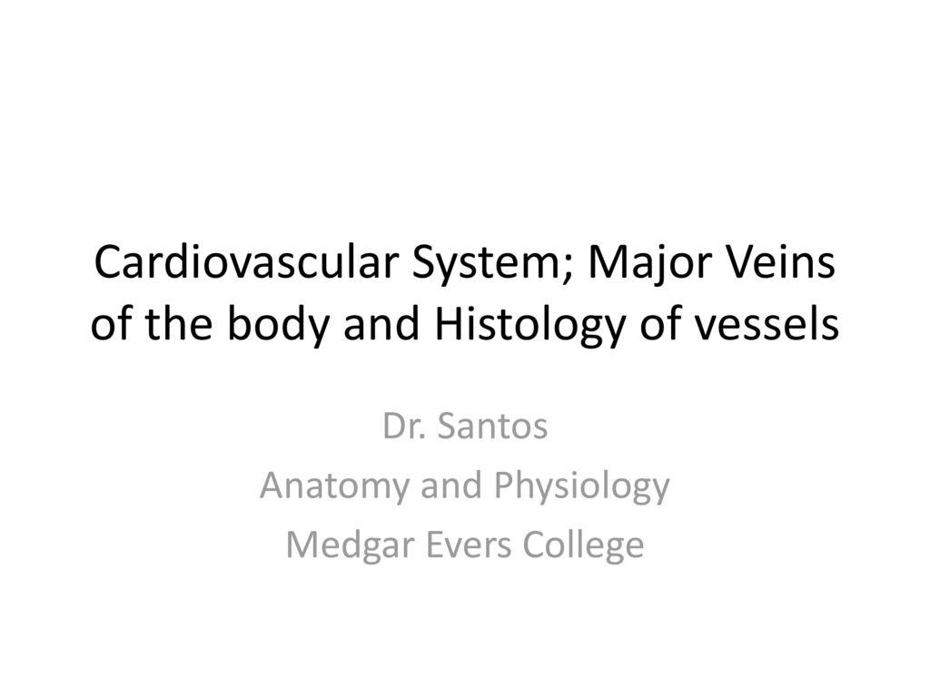 Modern Colleges With Anatomy Majors Photo - Anatomy Ideas - yunoki.info