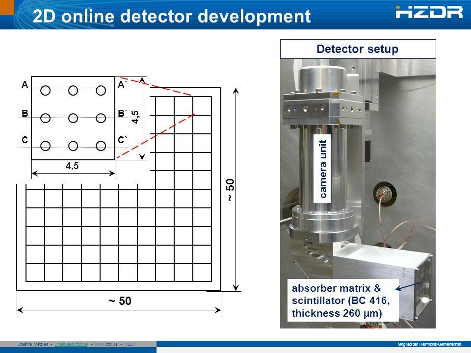 2D online detector development