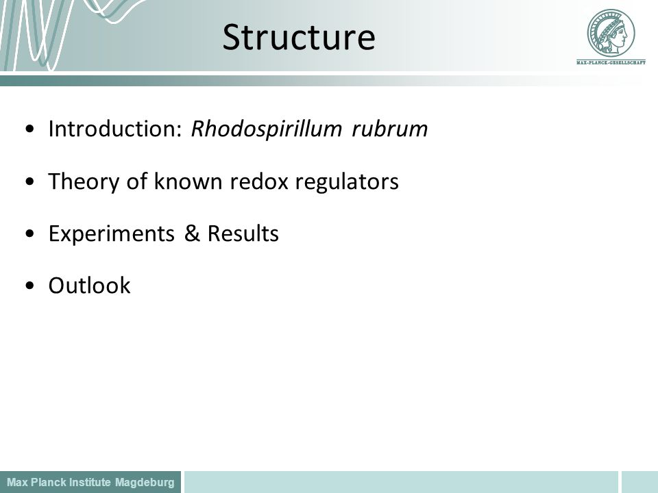 Structure Introduction: Rhodospirillum rubrum