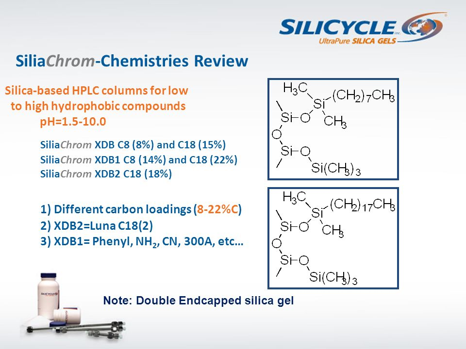 SiliaChrom-Chemistries Review