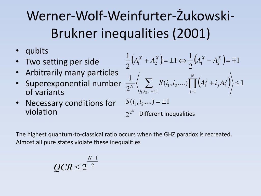 professor werner wolf
