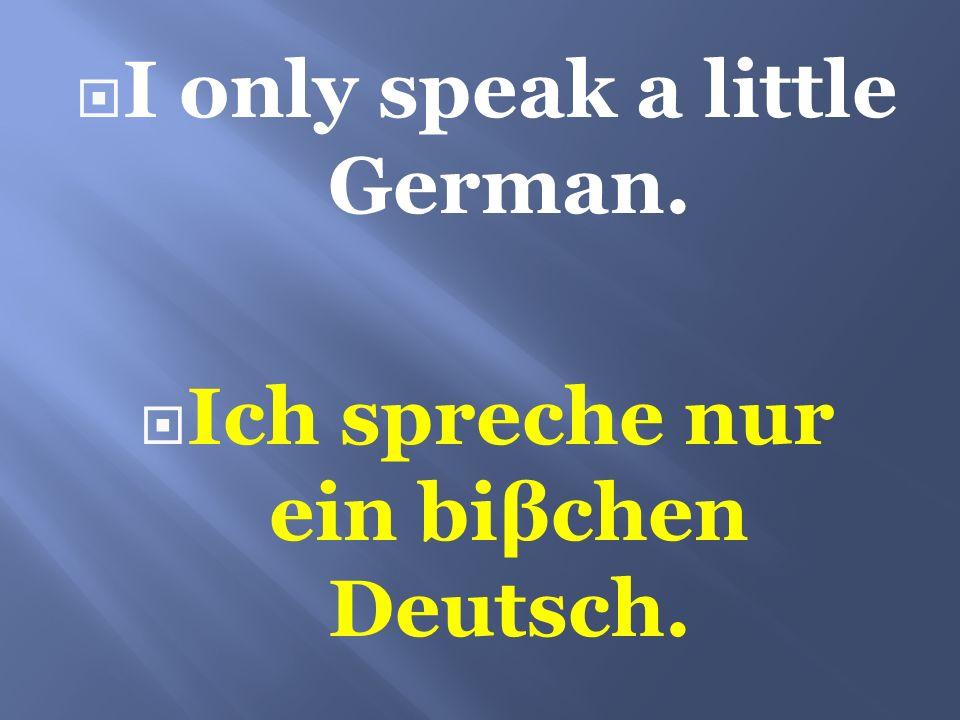 I only speak a little German. Ich spreche nur ein biβchen Deutsch.