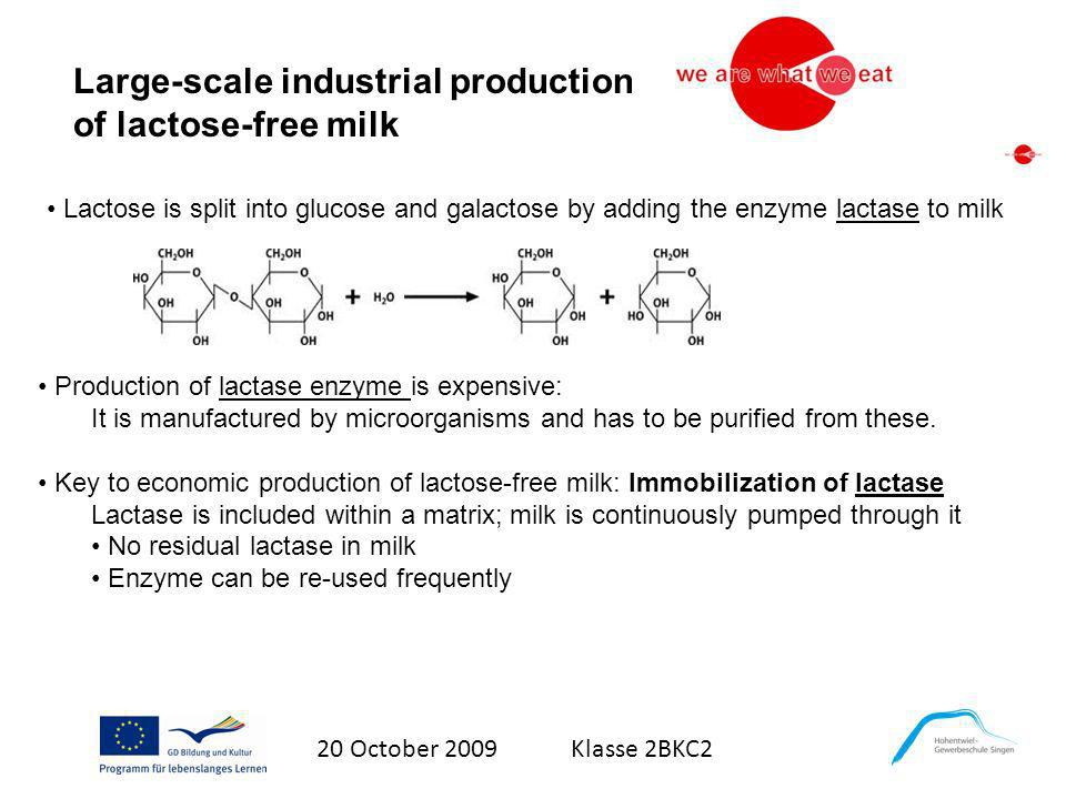 Large-scale industrial production of lactose-free milk