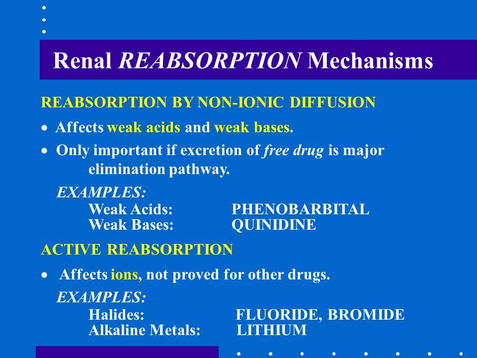 Renal REABSORPTION Mechanisms