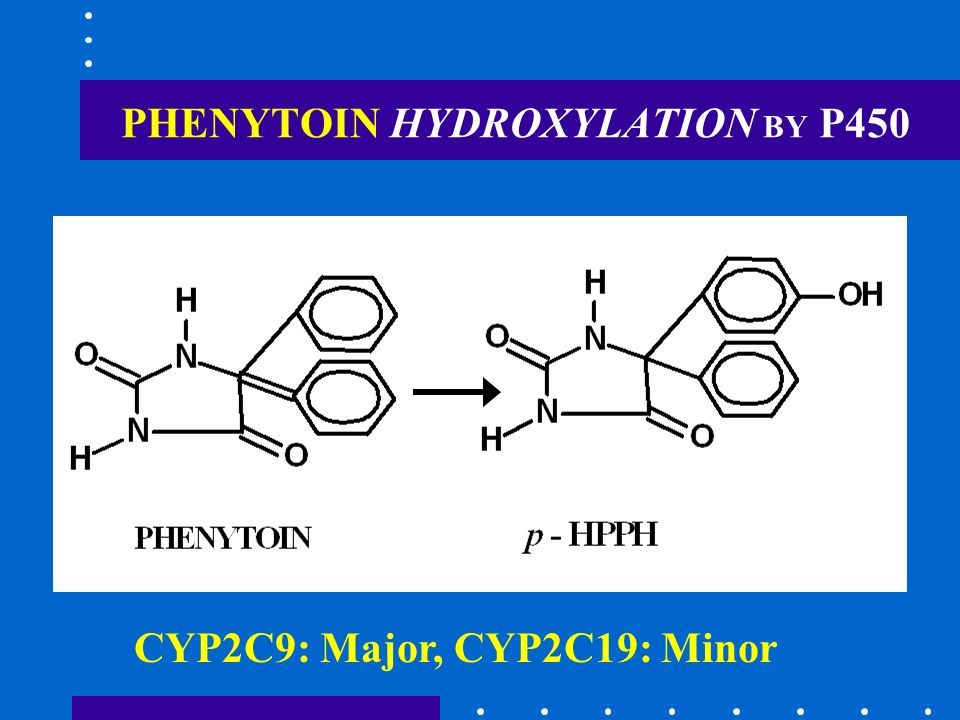 PHENYTOIN HYDROXYLATION BY P450