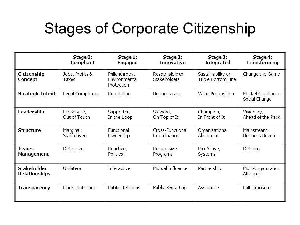 3 Issues Of Corporate Citizenship And Social Responsibility Essay Sample