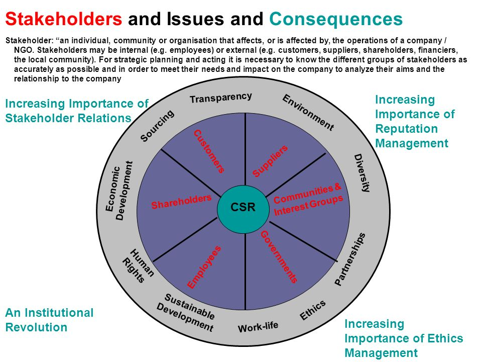 Stakeholders and Issues and Consequences