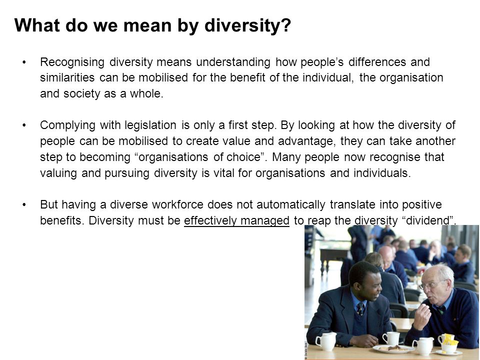 What do we mean by diversity