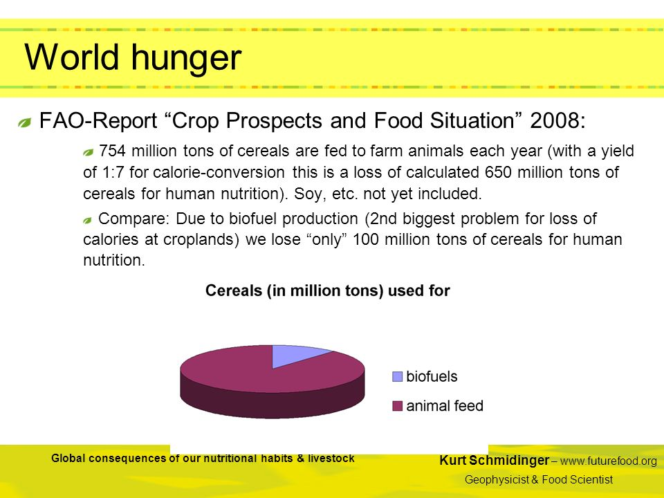 World hunger FAO-Report Crop Prospects and Food Situation 2008:
