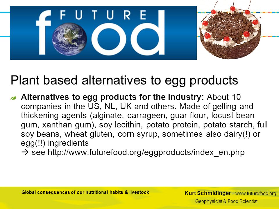 Plant based alternatives to egg products
