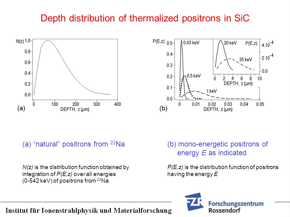 Depth distribution of thermalized positrons in SiC