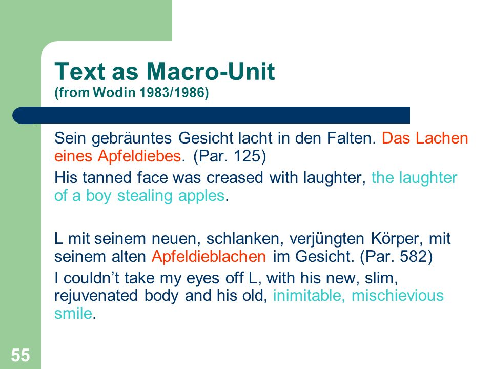 Text as Macro-Unit (from Wodin 1983/1986)