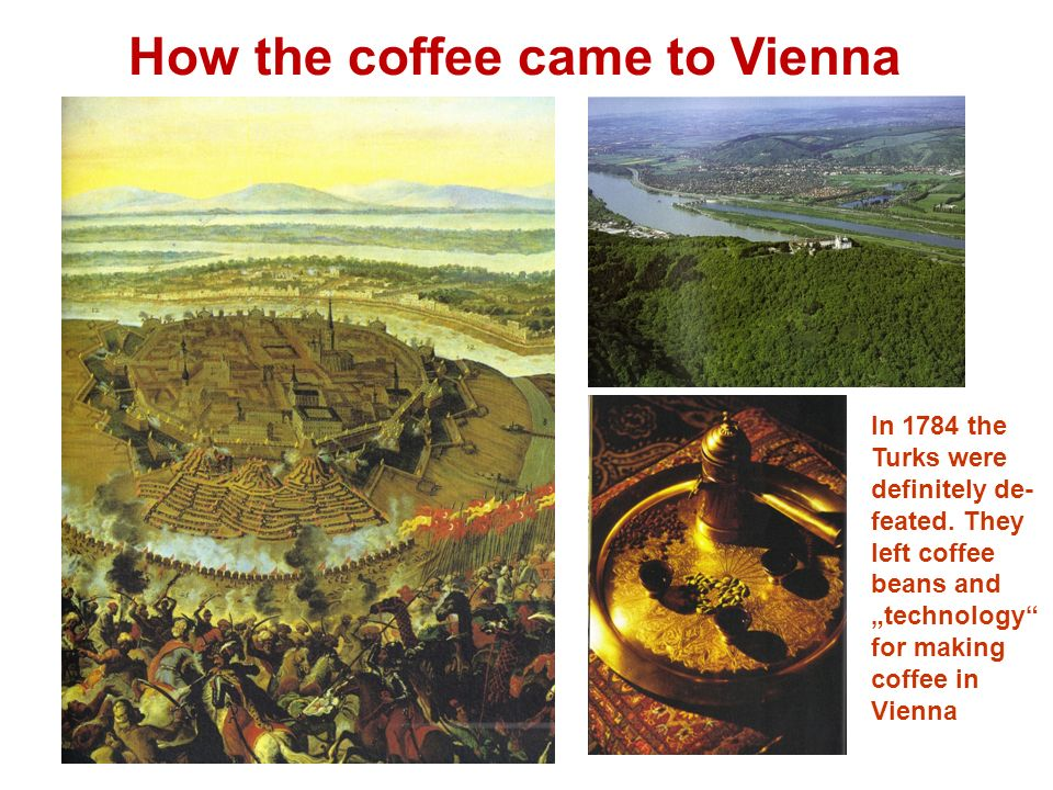 How the coffee came to Vienna