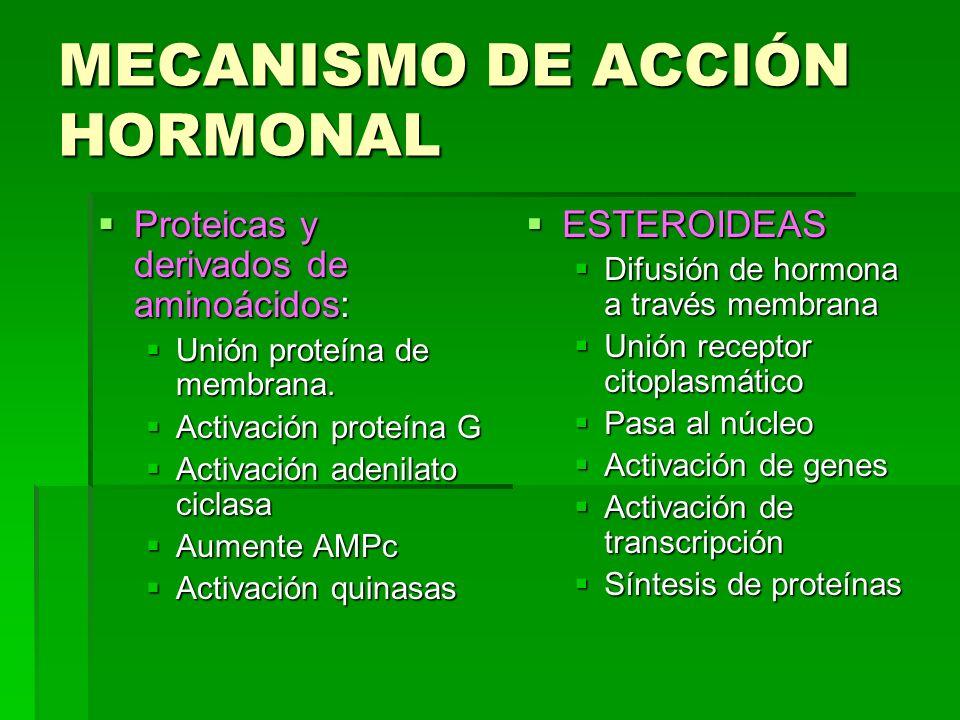 MECANISMO DE ACCIÓN HORMONAL