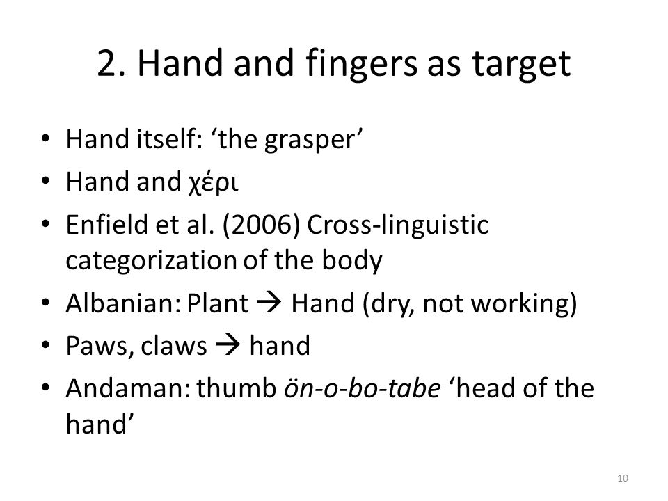 2. Hand and fingers as target