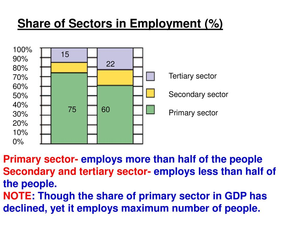 Share of Sectors in Employment (%)
