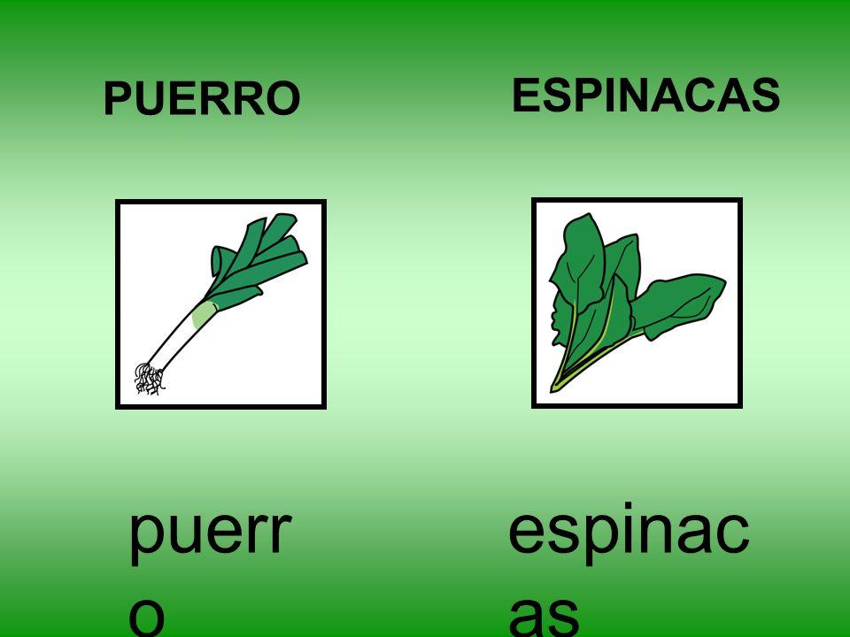 PUERRO ESPINACAS puerro espinacas