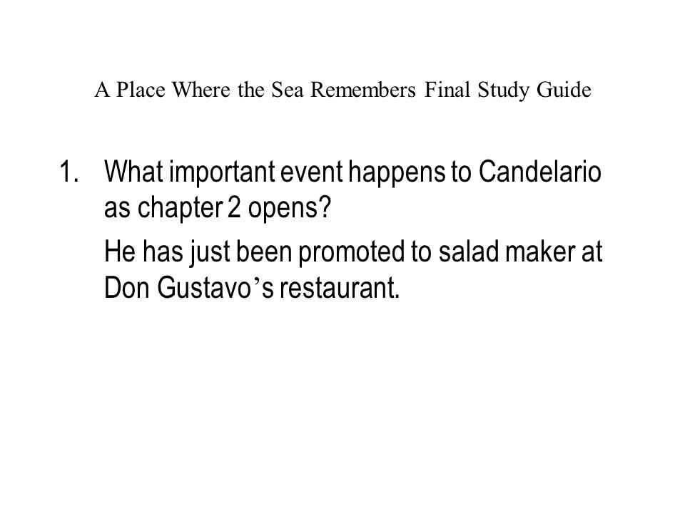 A Place Where the Sea Remembers Final Study Guide