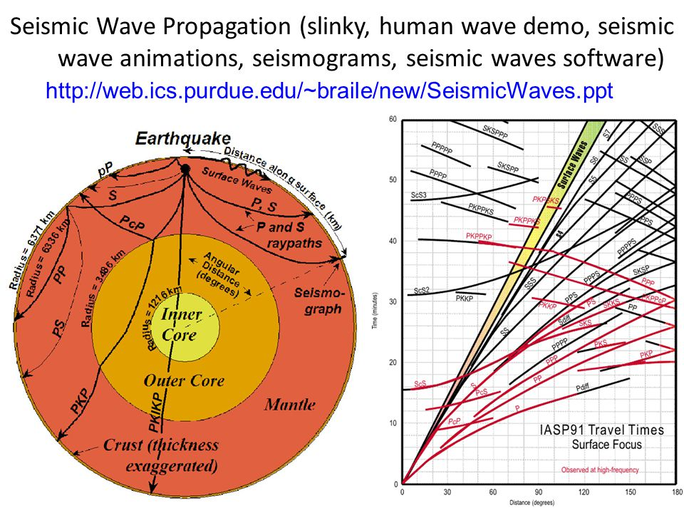 Seismic Wave Propagation (slinky, human wave demo, seismic wave animations, seismograms, seismic waves software)