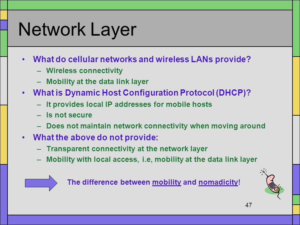 Network Layer What do cellular networks and wireless LANs provide